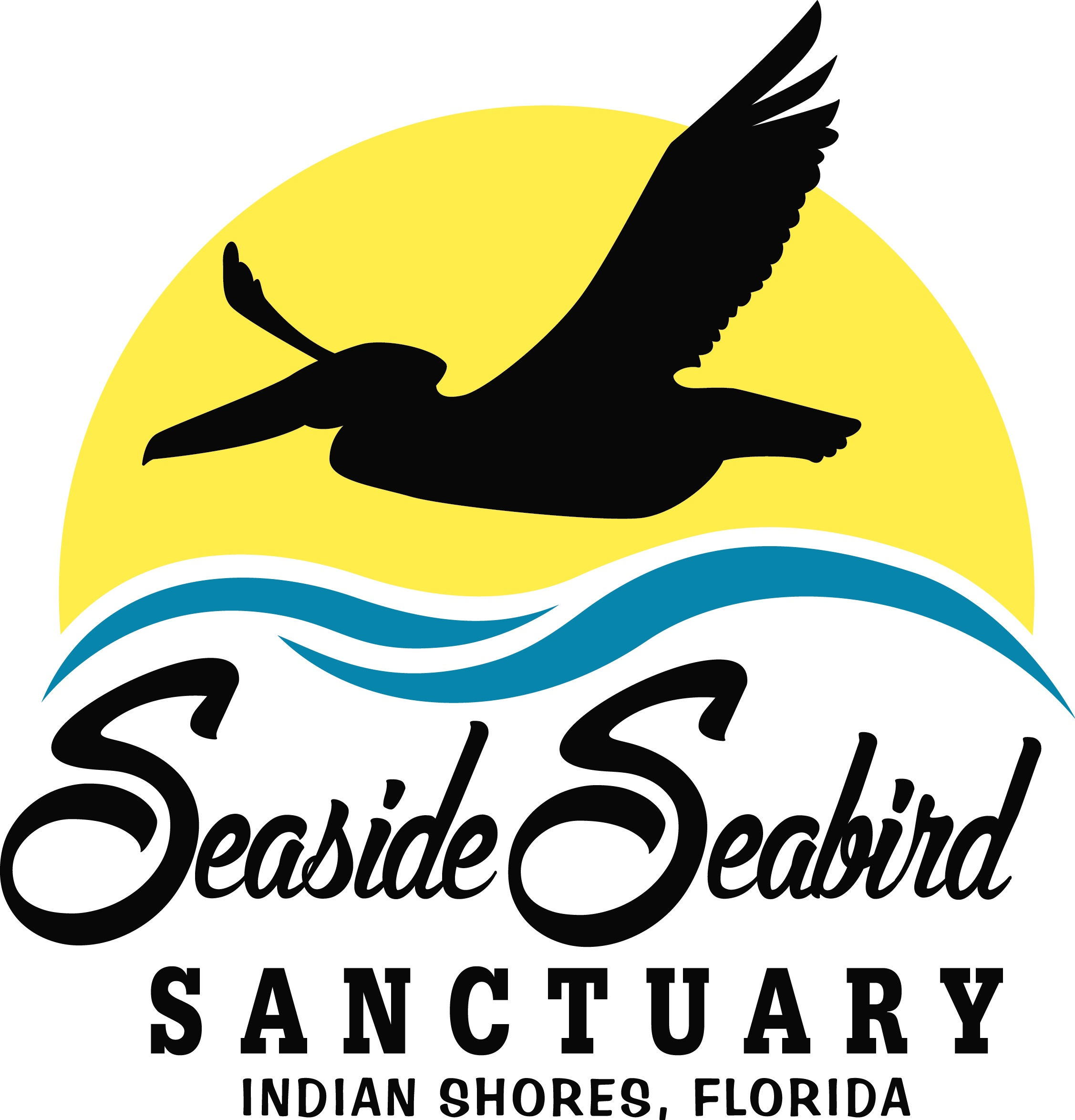 seaside-seabird-sanctuary.jpg