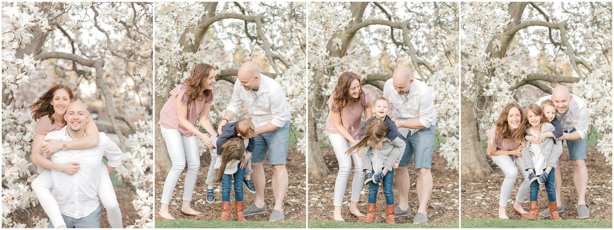 arnold arboretum spring family photos