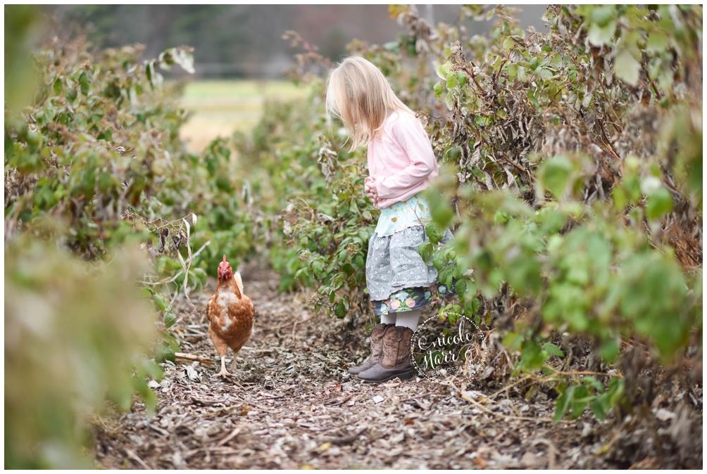 new england barn powisset farm photo session_0002