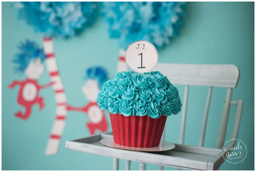 boston baby photographer dr seuss cake smash_0001