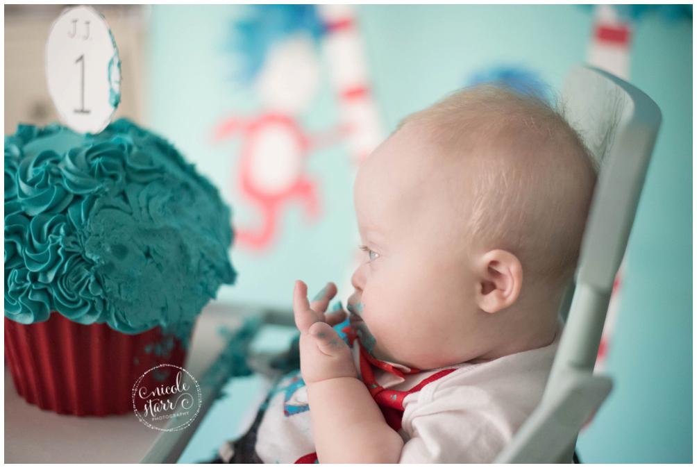 boston baby photographer dr seuss cake smash_0014