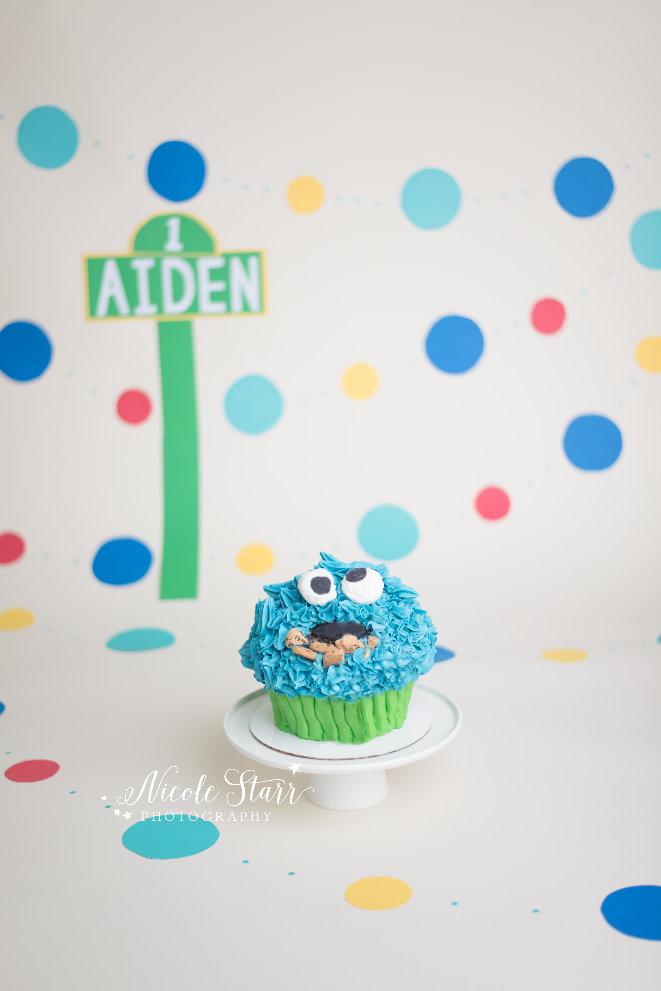 cookie monster sesame street first birthday cake smash