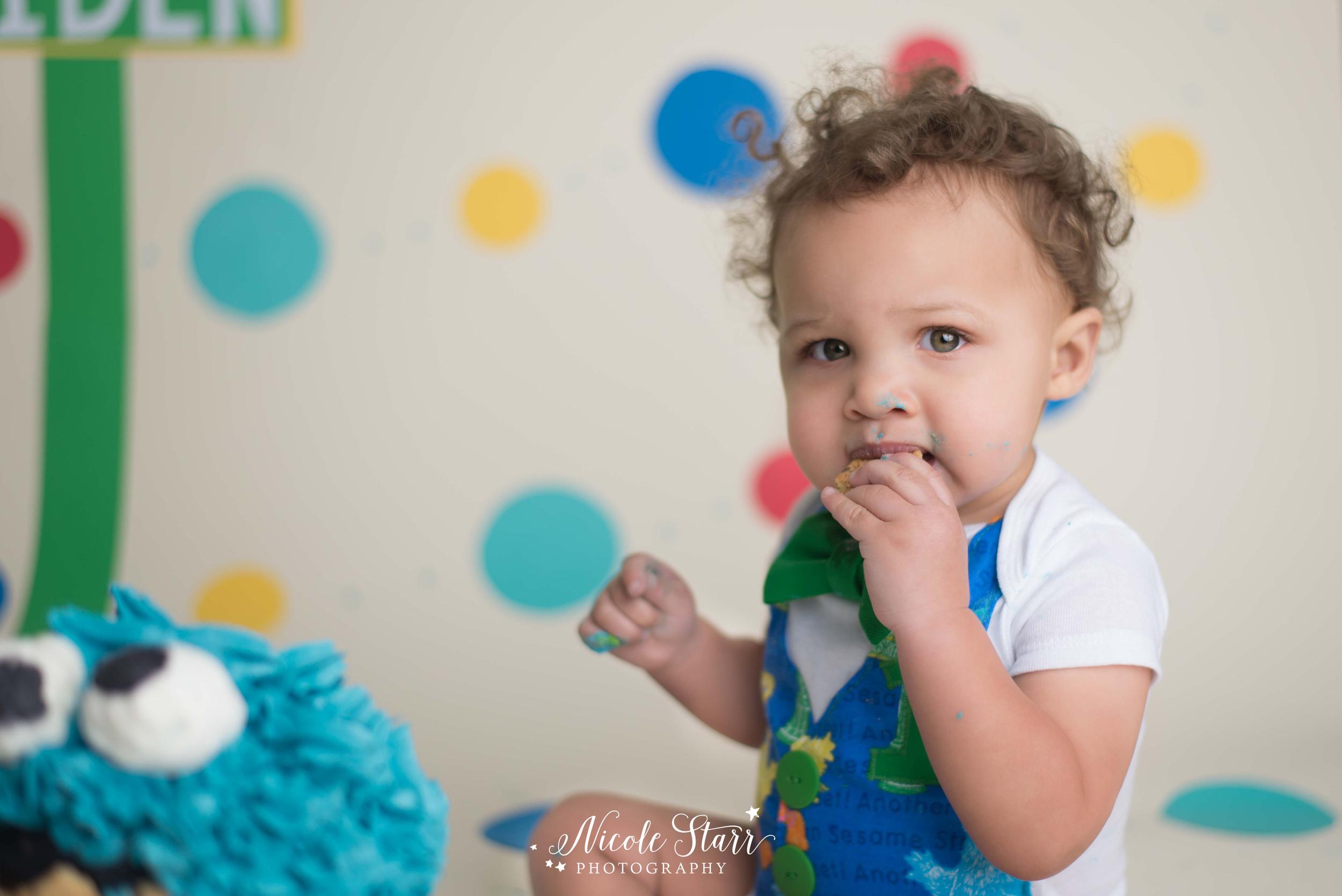albany saratoga springs baby photographer sesame street cake smash.jpg