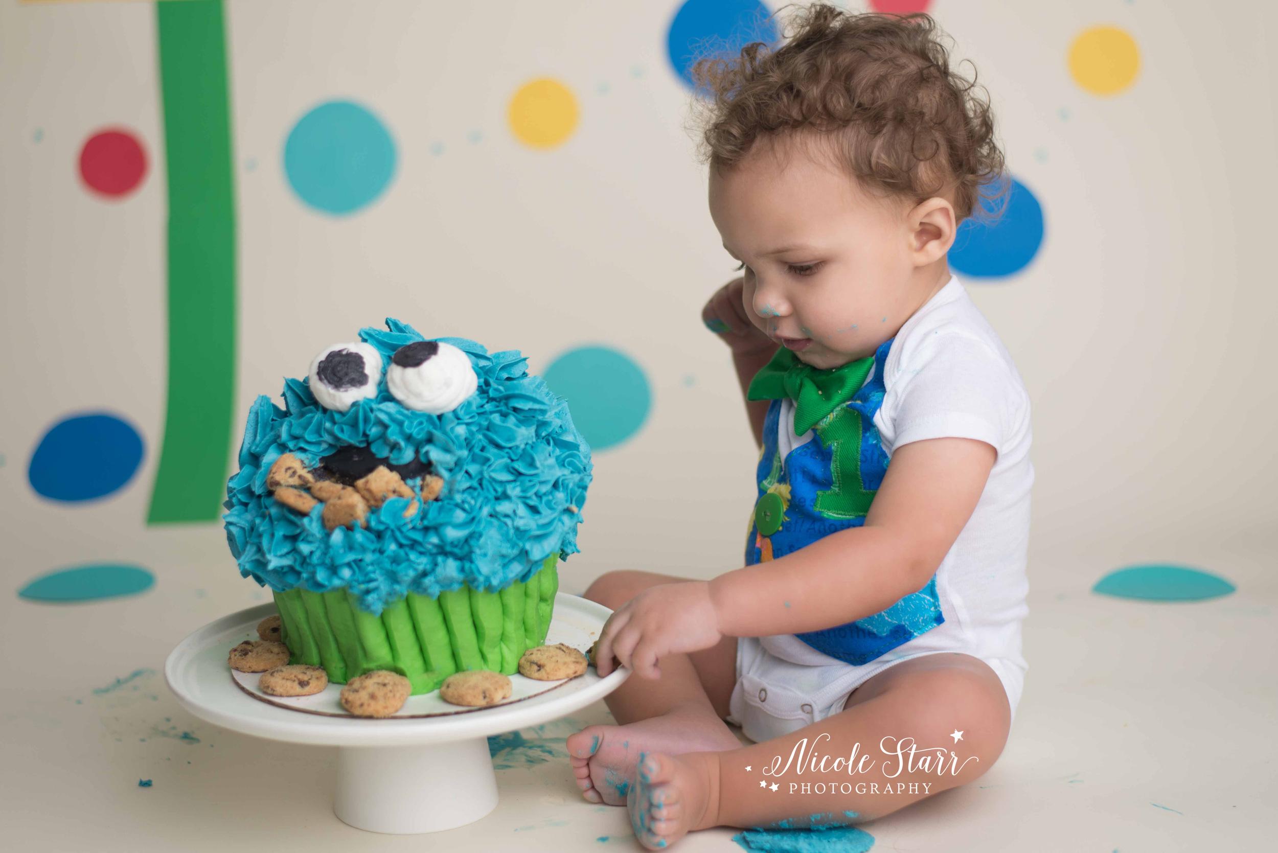 albany saratoga springs cake smash photographer.jpg