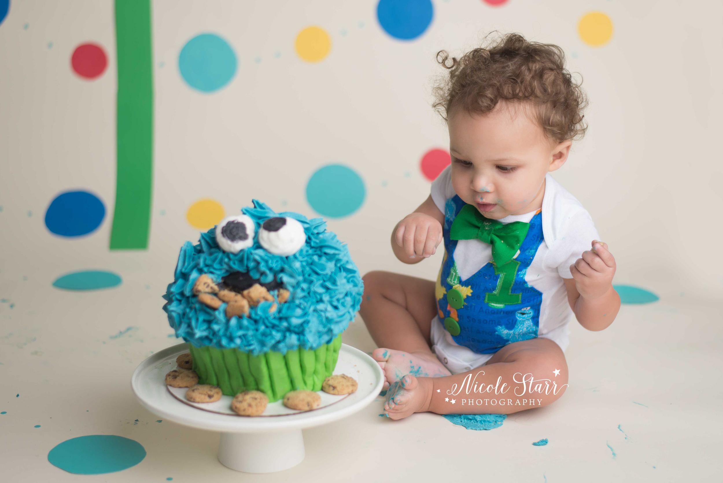 cookie monster cake smash baby portrait photographer.jpg