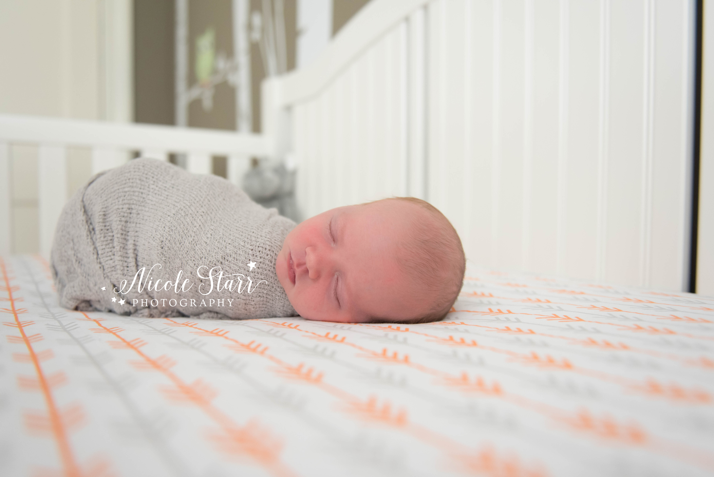lifestyle newborn session in crib.jpg