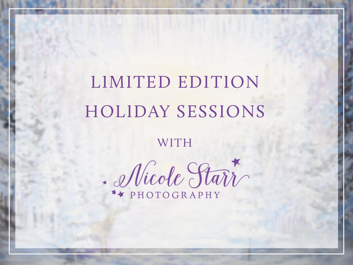 christmas holiday mini session saratoga springs baby photographer boston baby photographer