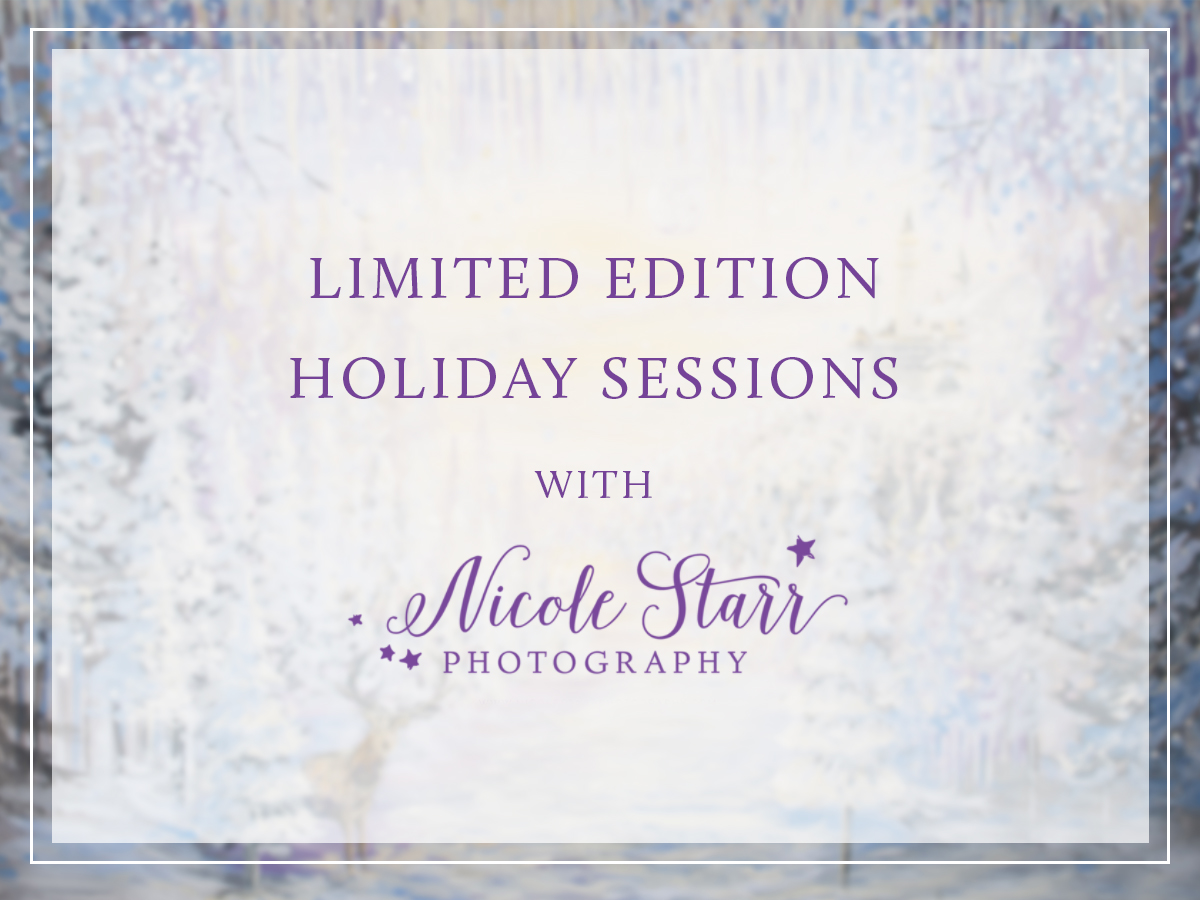 christmas mini sessions boston saratoga springs albany family photographer