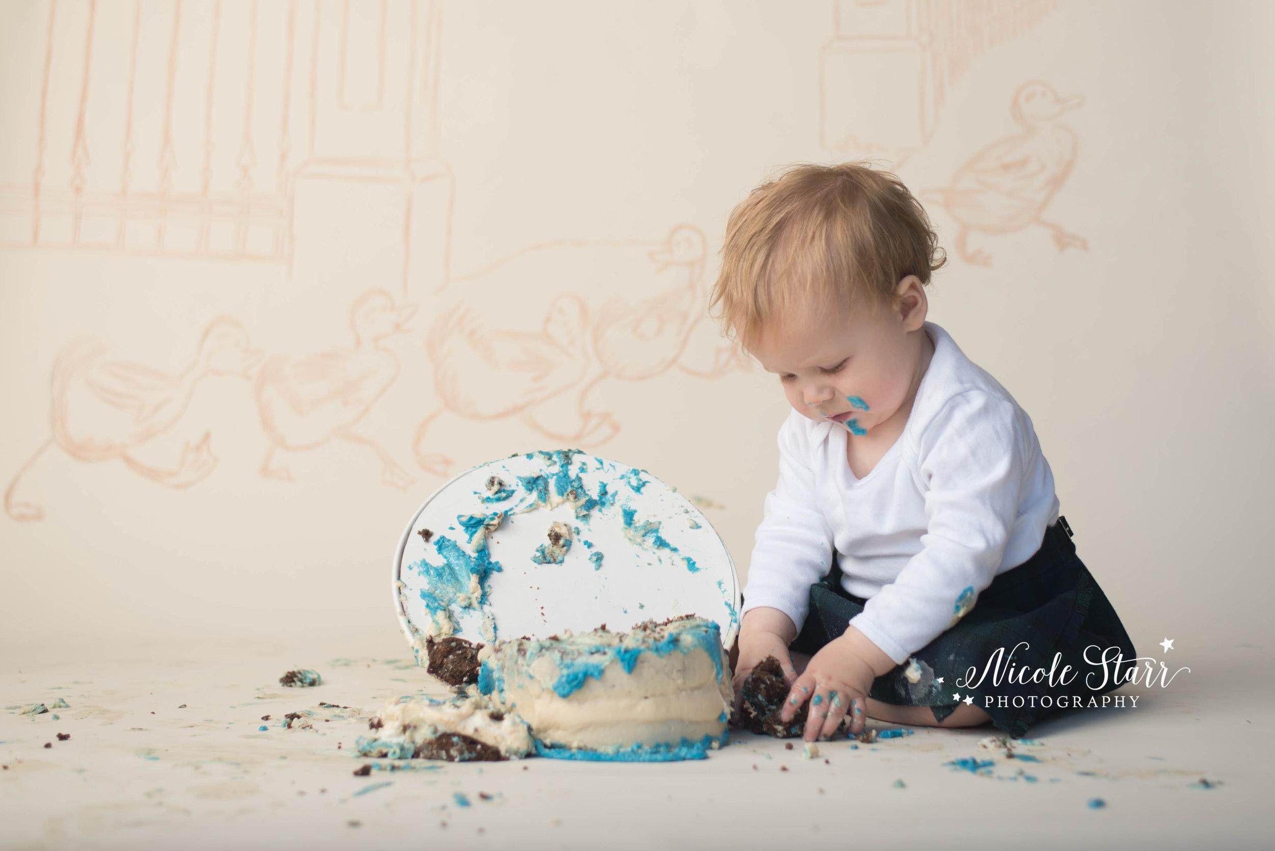 make way for ducklings cake smash boston baby photographer.jpg