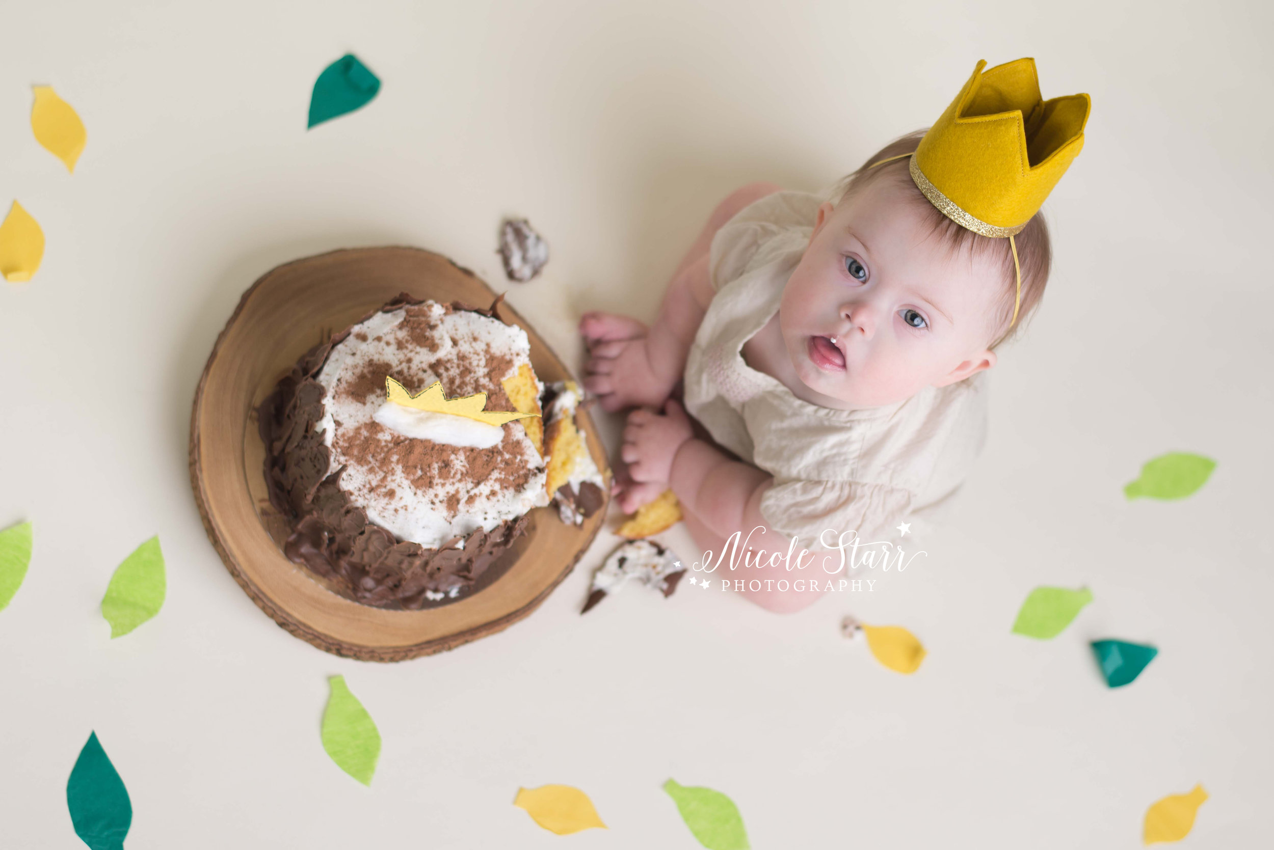 where the wild things are cake smash nicole starr photography.jpg