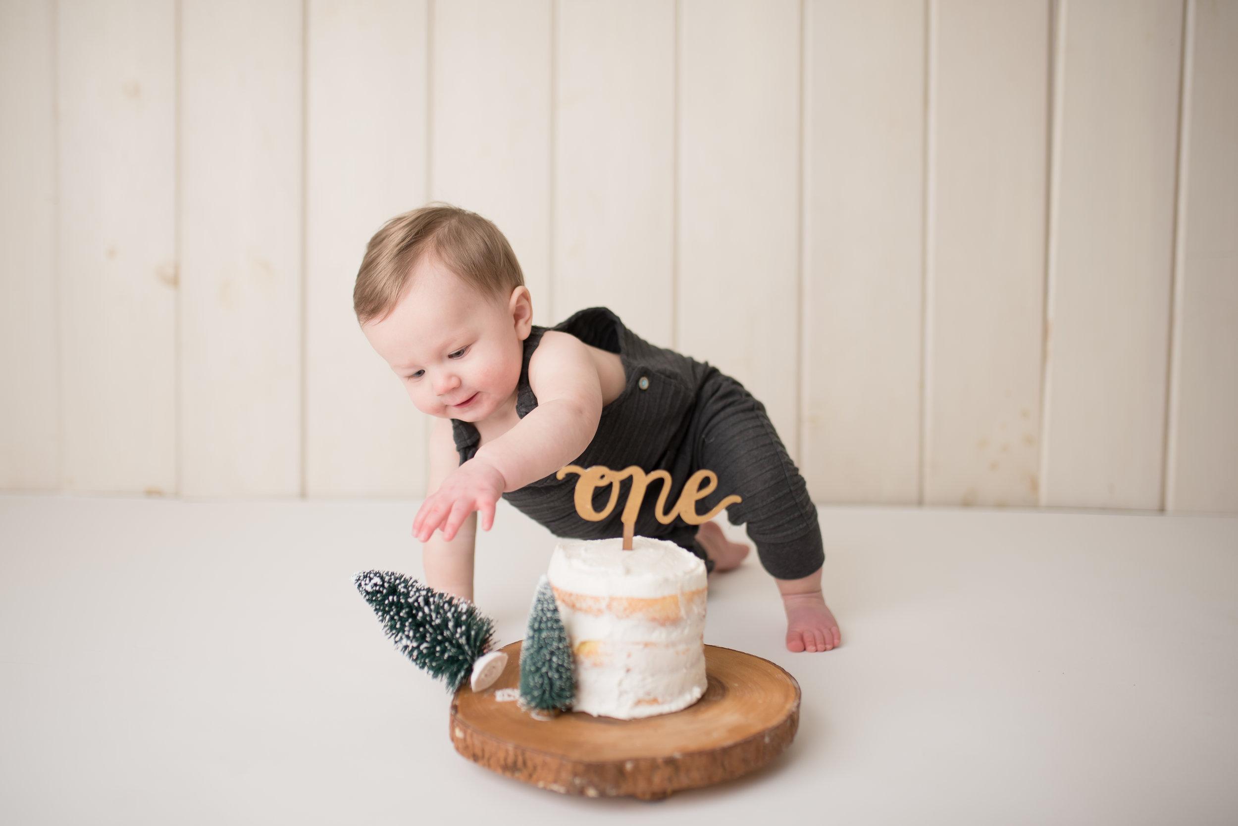 Nicole Starr Photography | Saratoga Springs Cake Smash Photographer | Boston Cake Smash Photographer | Saratoga Springs Family Photographer | Boston Family Photographer  Delmar NY Cake Smash Photographer | Loudonville NY Cake Smash Photographer