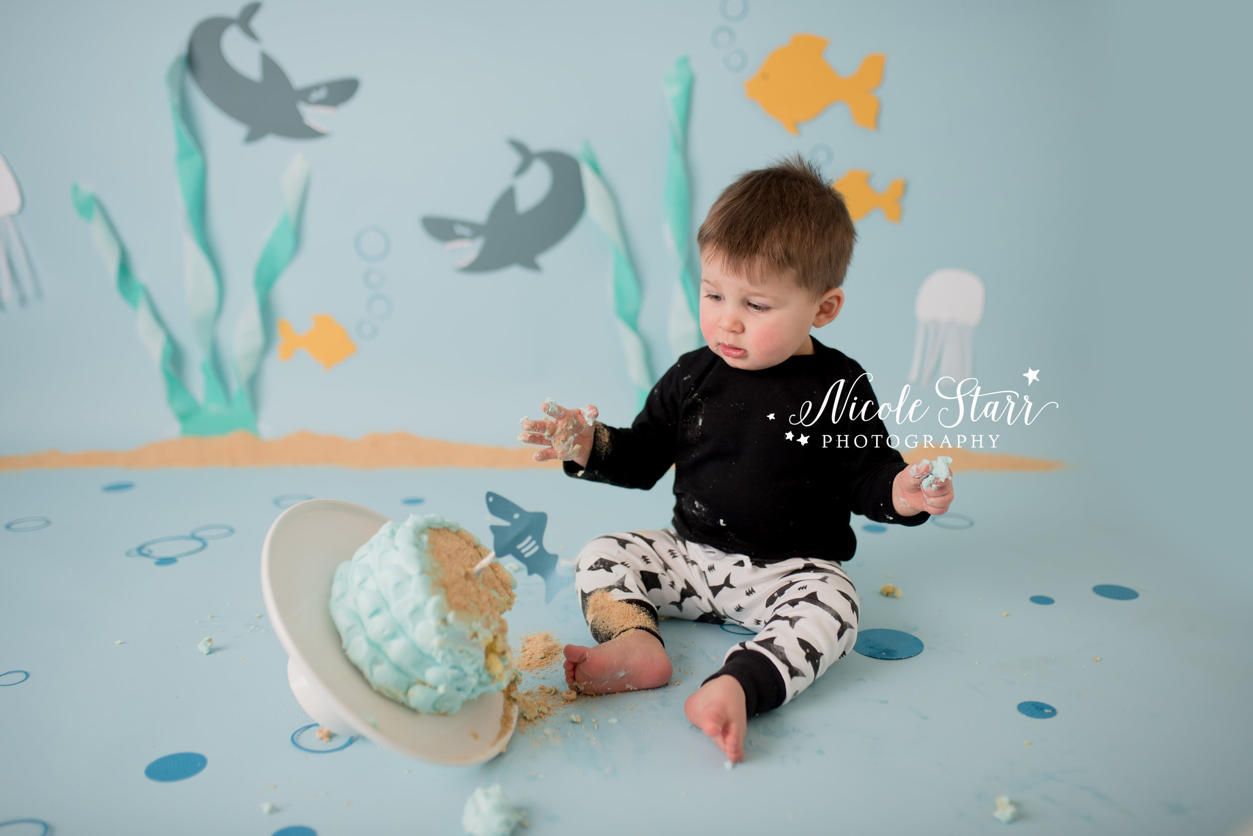 Nicole Starr Photography | Saratoga Springs Cake Smash Photographer | Boston Cake Smash Photographer | Saratoga Springs Family Photographer | Boston Family Photographer Delmar NY Cake Smash Photographer | Loudonville NY Cake Smash Photographer | Baby Shark Cake smash | baby shark inspired cake smash