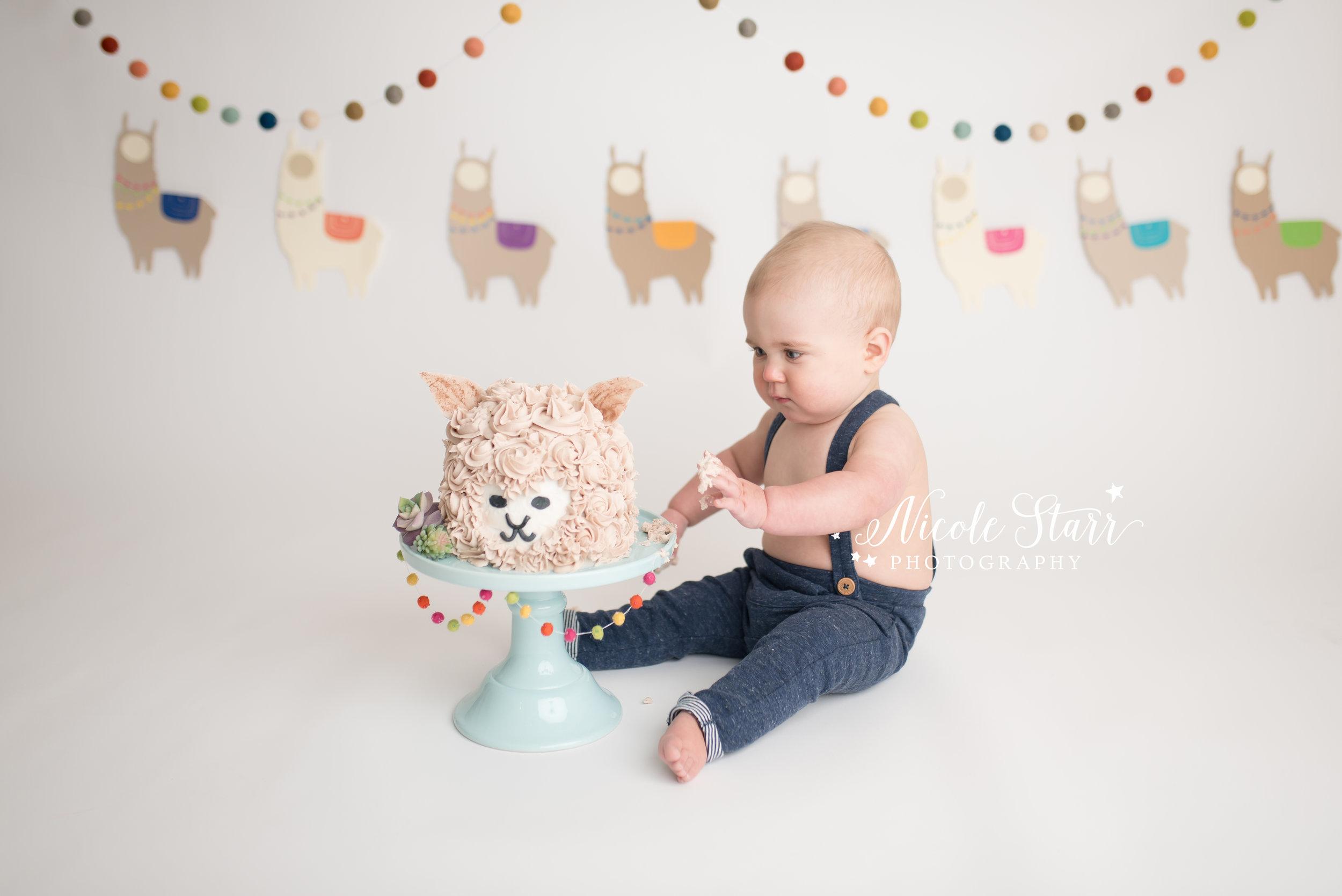 llama cake smash for baby's first birthday