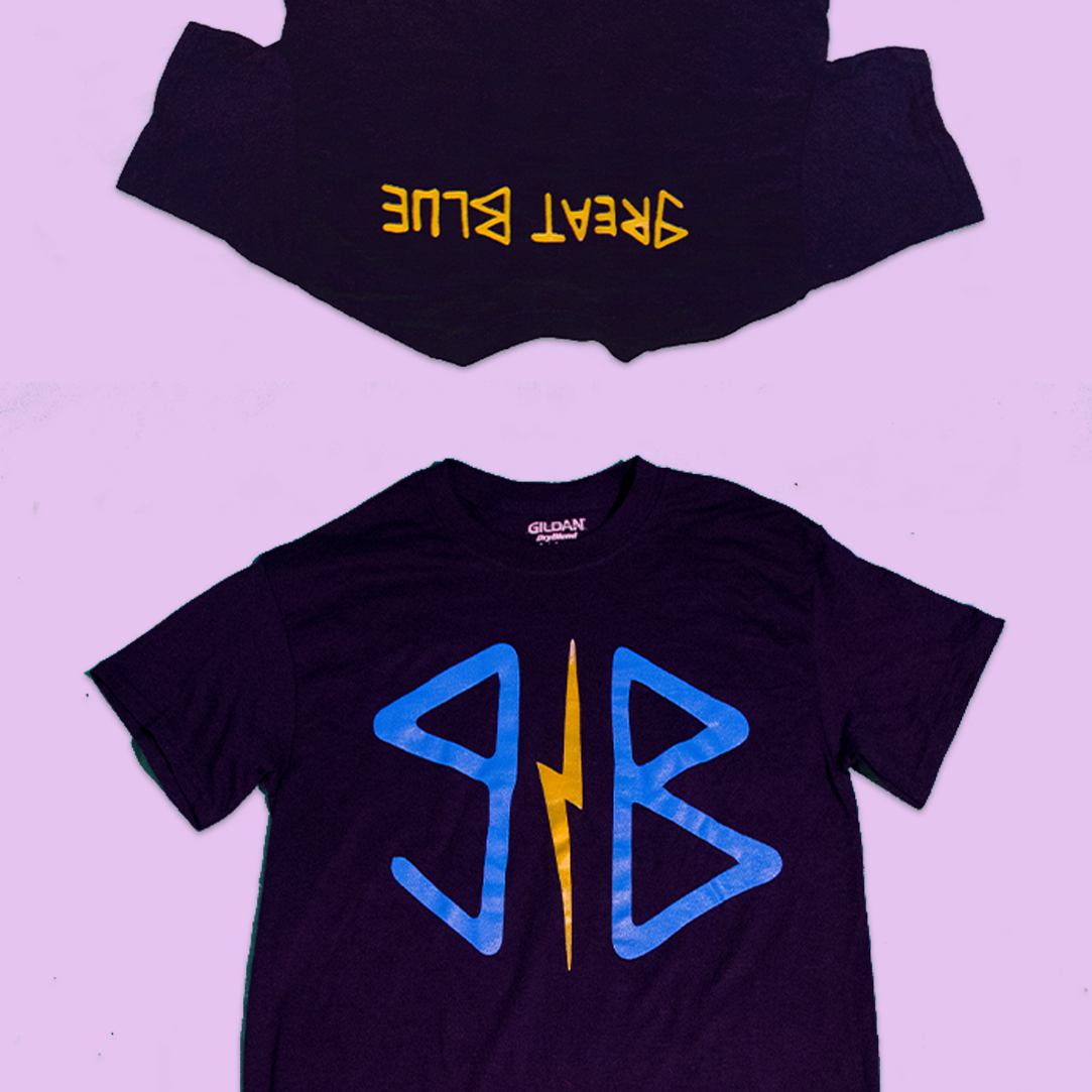NAVY T-SHIRT › $15