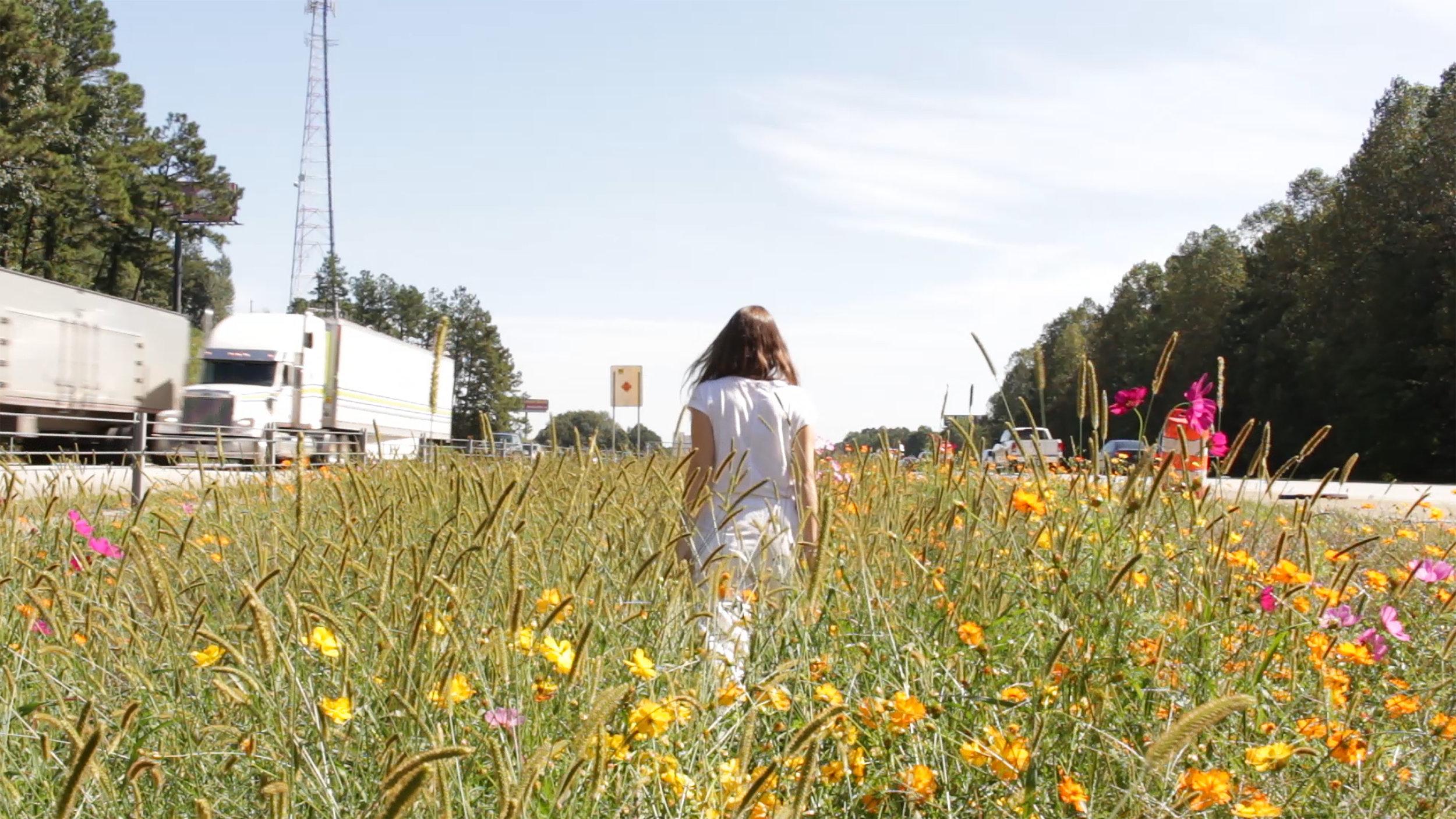 walk in the flowers still.jpg