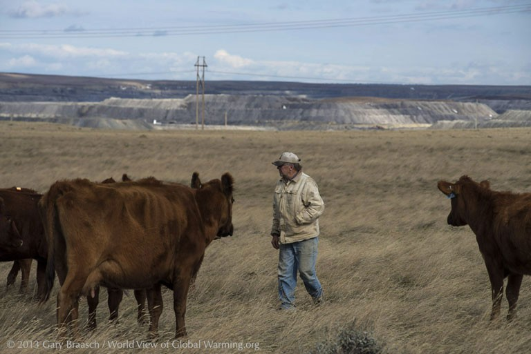 Here is Rancher, LJ Turner with his cattle (credit:  Gary Braasch )