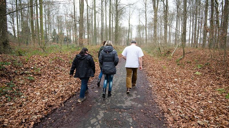 SILVA - La Forêt de Soignes