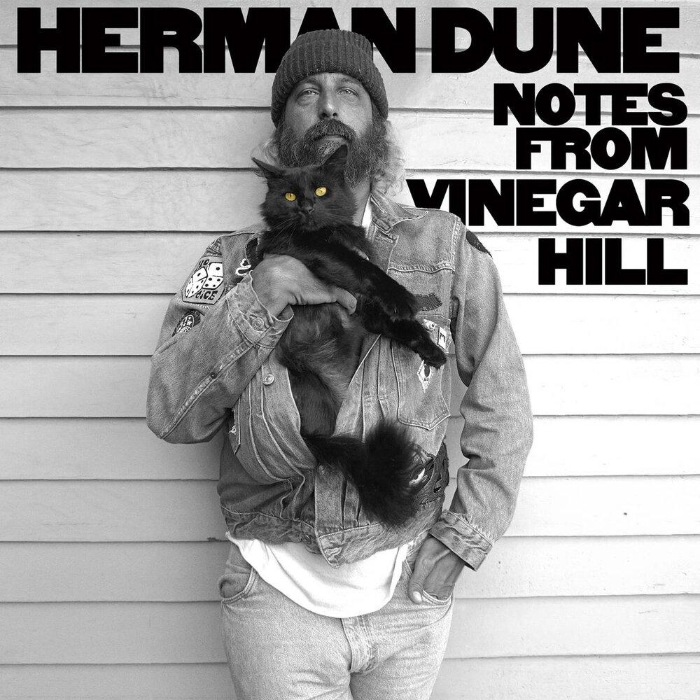 Herman Dune Vinyl CD Notes From Vinegar Hill