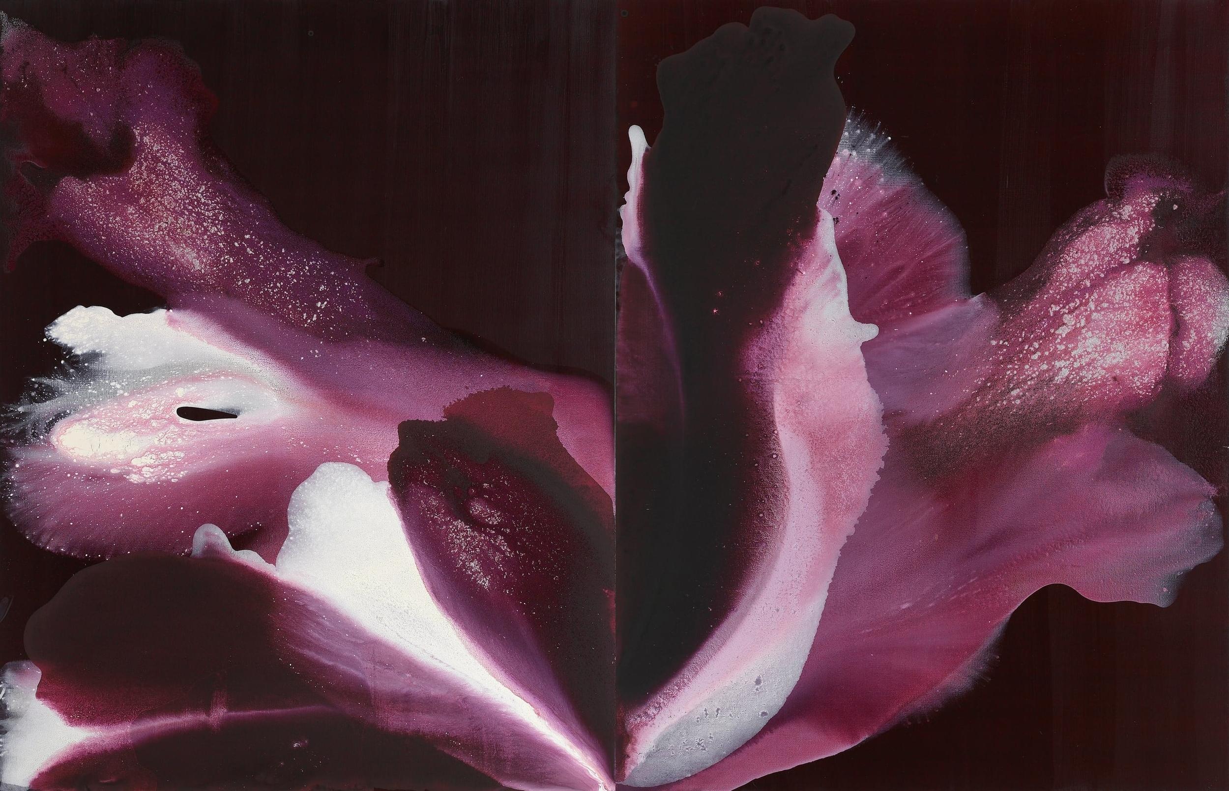 figure_15  acrylic and pumice  gel on canvas  130 cm X 162 cm  2013
