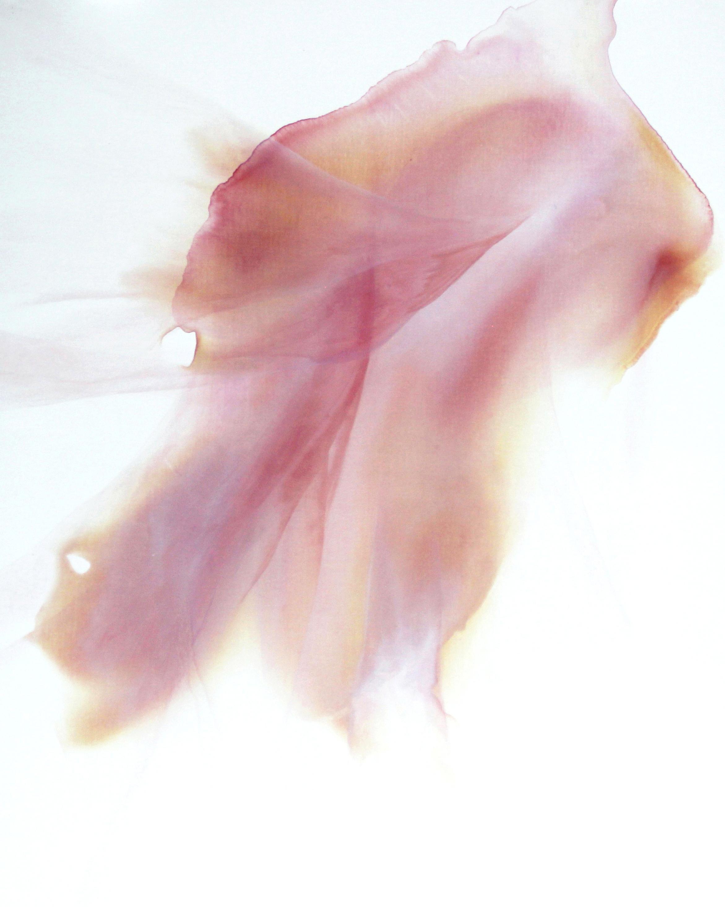 ephemeral_10  oil on canvas  91 X 117 cm  2017