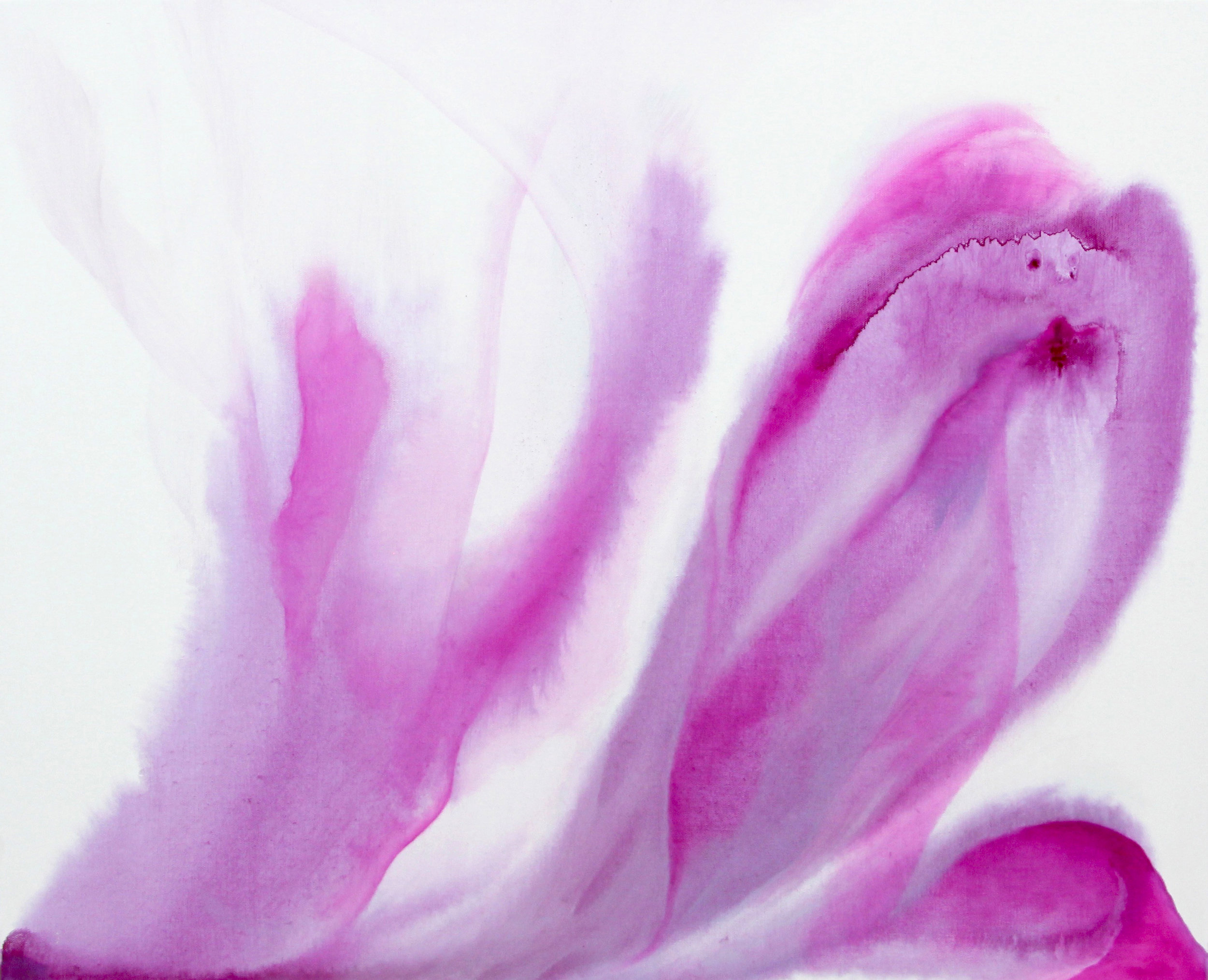 ephemeral_08  90 X 73 cm  oil on canvas  2017