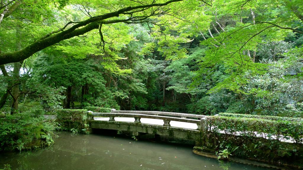 Honen-In Temple on Philosopher's Path, Kyoto
