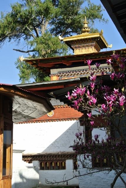 Kichu Lhakhang (1) (428x640).jpg