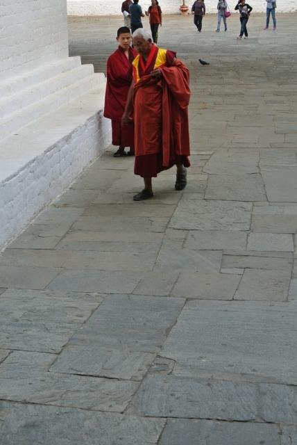 Punakha Dzong (43) (428x640).jpg