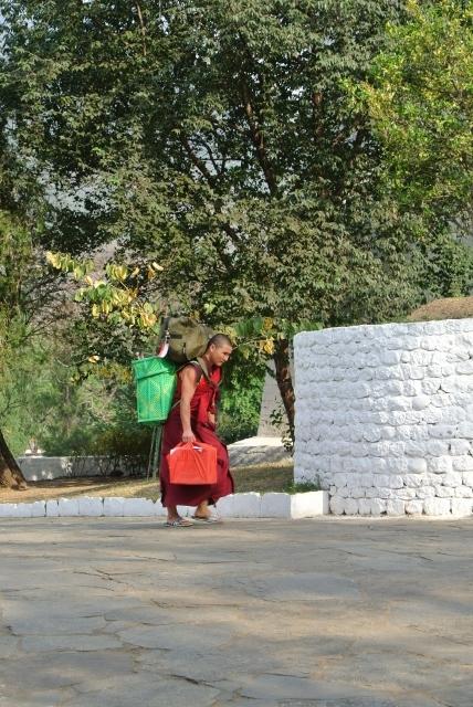 Punakha Dzong (27) (428x640).jpg