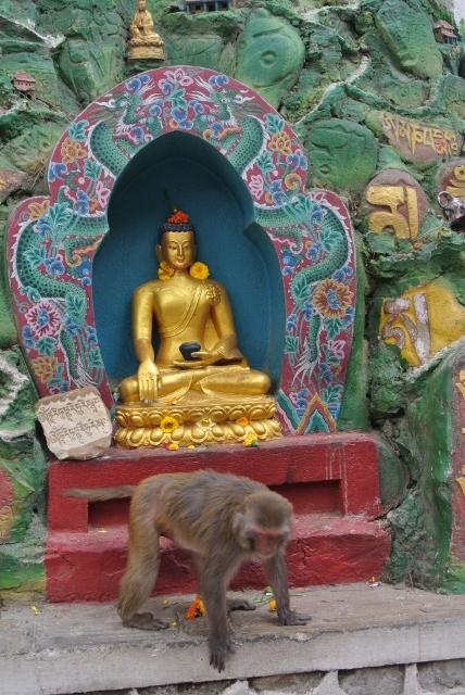 Aamideva BuddhaPark (6) (428x640).jpg