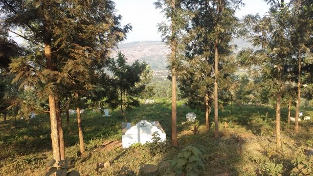 Mt Kigali (14) (640x360).jpg