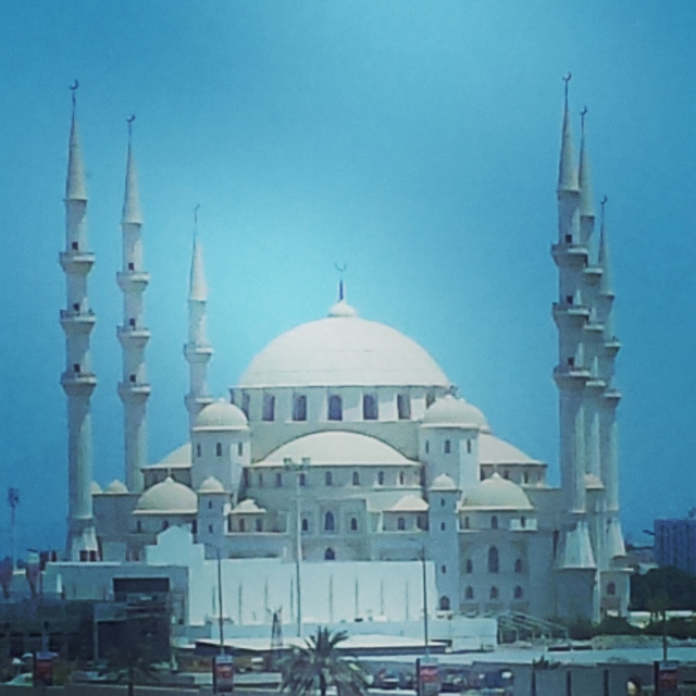 Sheikh Zayed Mosque (2) (640x640).jpg