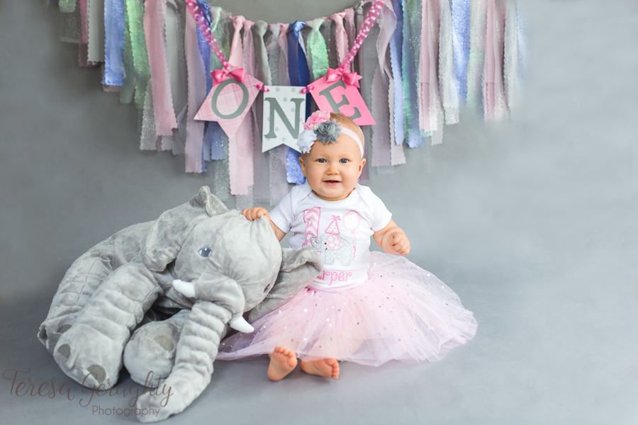 Long Island photographer for first birthday pictures