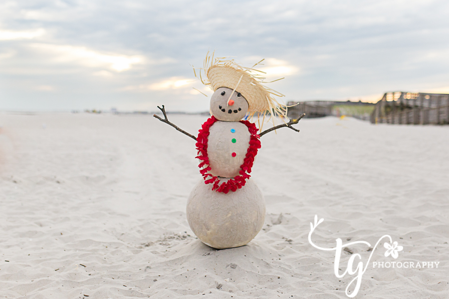 Long Island Photographer for holiday mini sessions