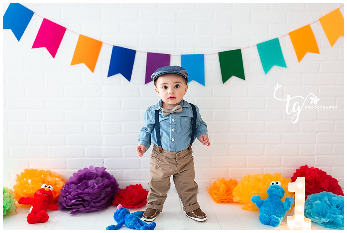 Sesame Street themed first birthday photoshoot
