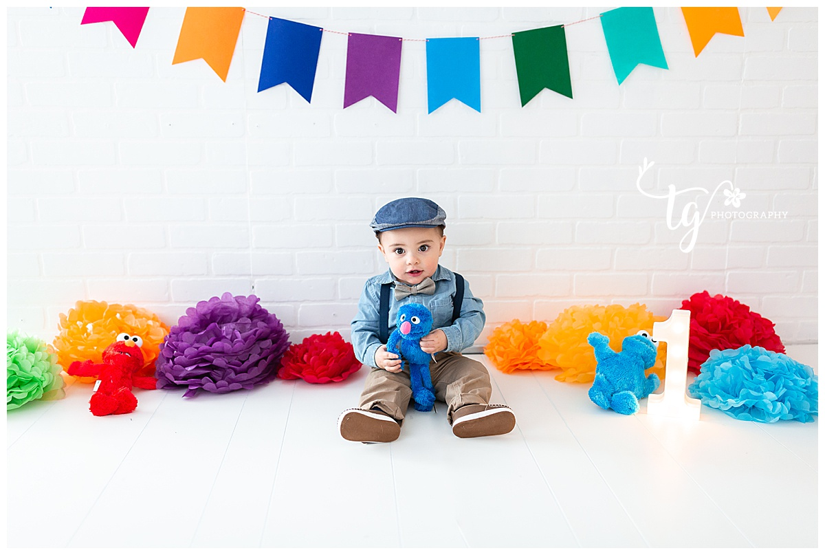 Sesame Street themed first birthday phtooghrapher