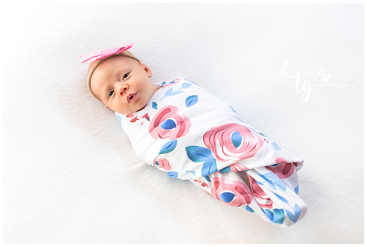 clean and classic newborn photography