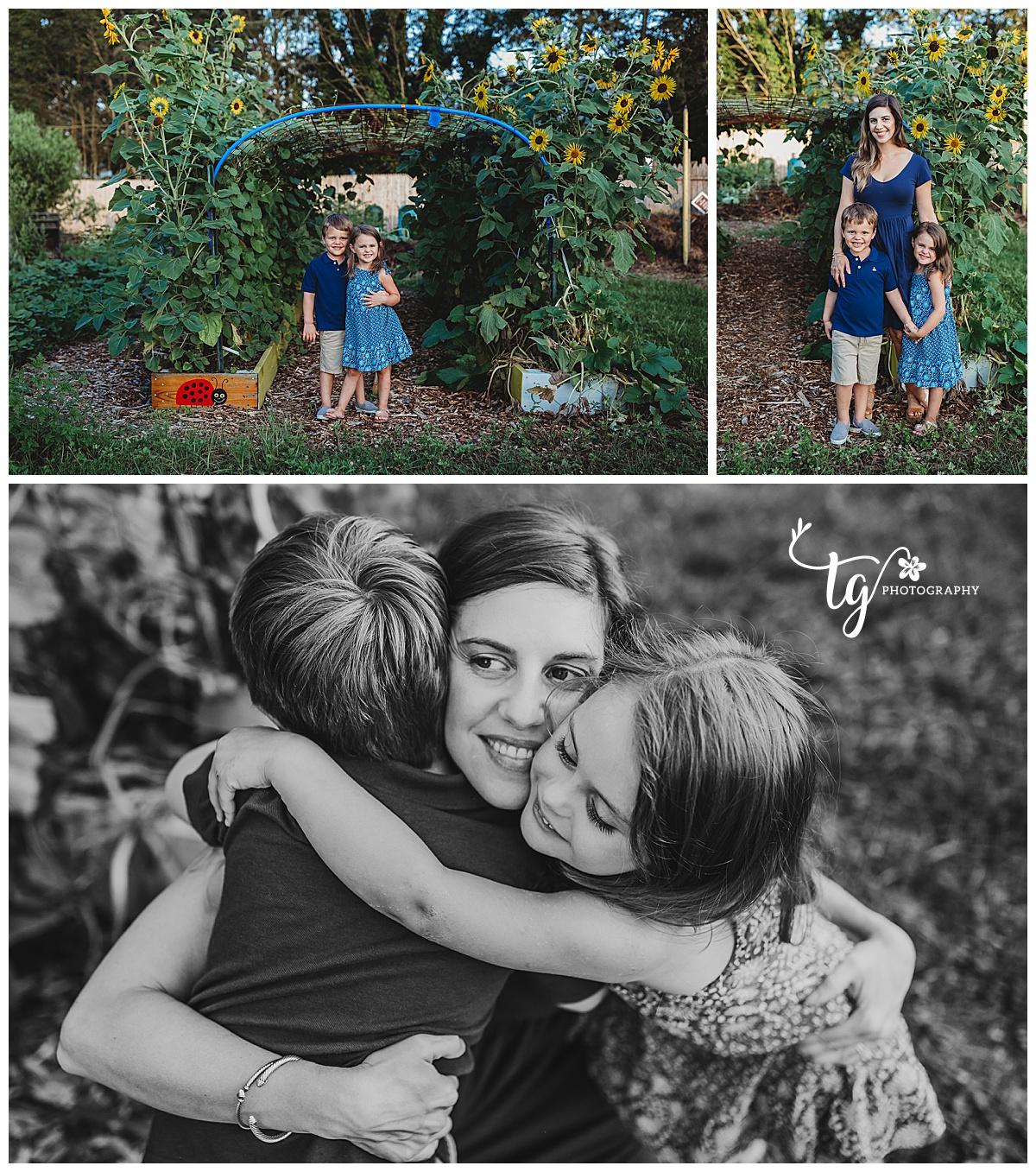 sunflower family photo
