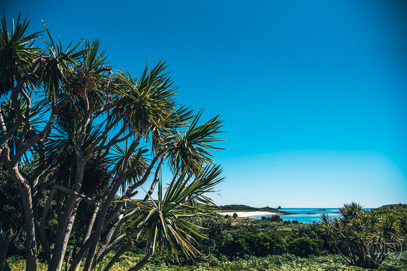 isles-of-scilly-128.jpg