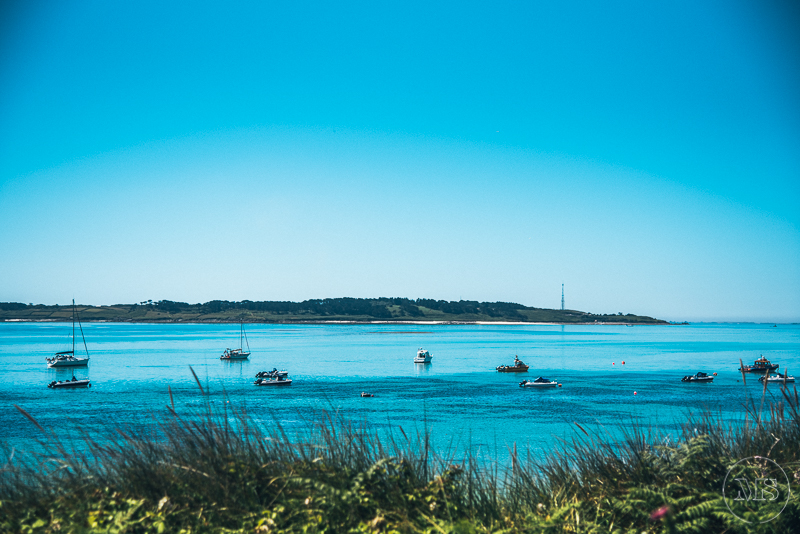 isles-of-scilly-145.jpg
