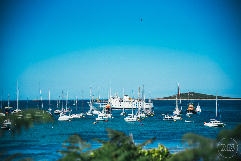 isles-of-scilly-237.jpg