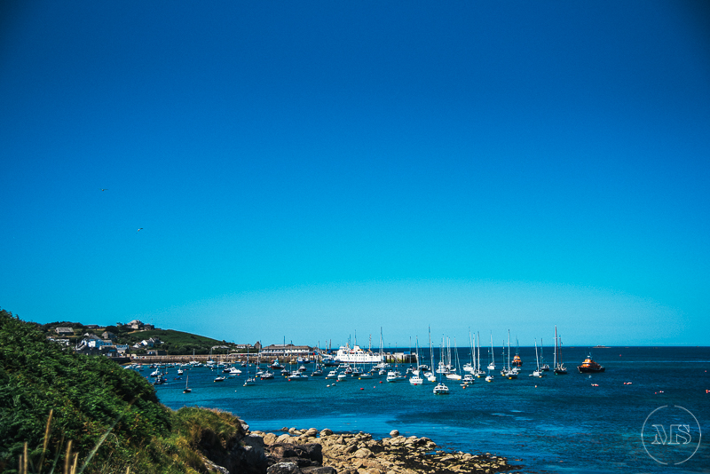 isles-of-scilly-239.jpg