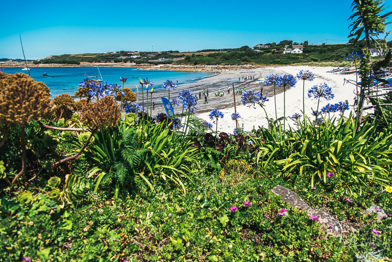 isles-of-scilly-241.jpg