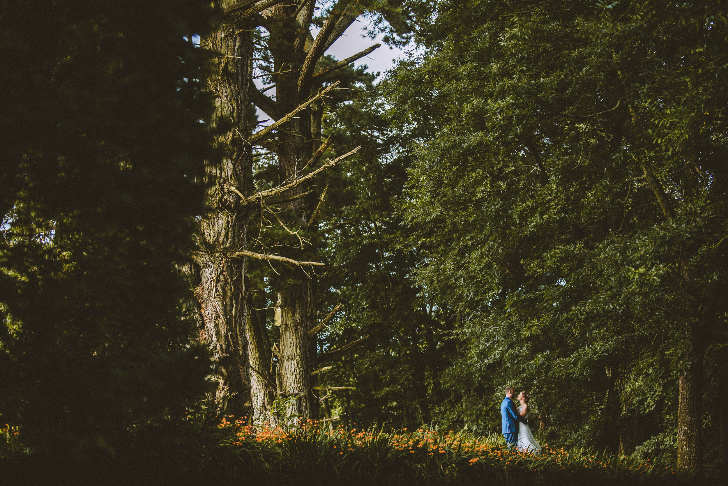 pencarrow-house-wedding-photographer-93.jpg