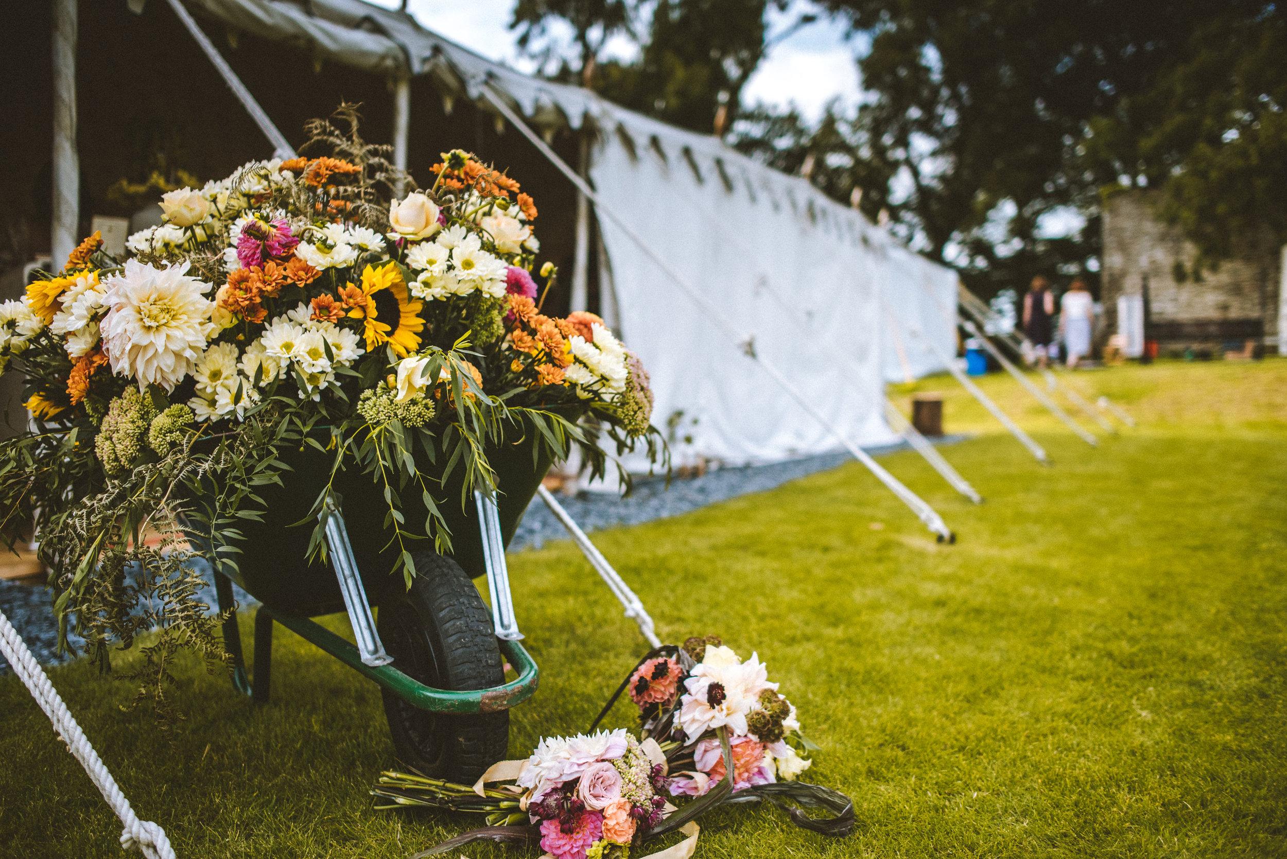 pencarrow-house-wedding-photographer-118.jpg