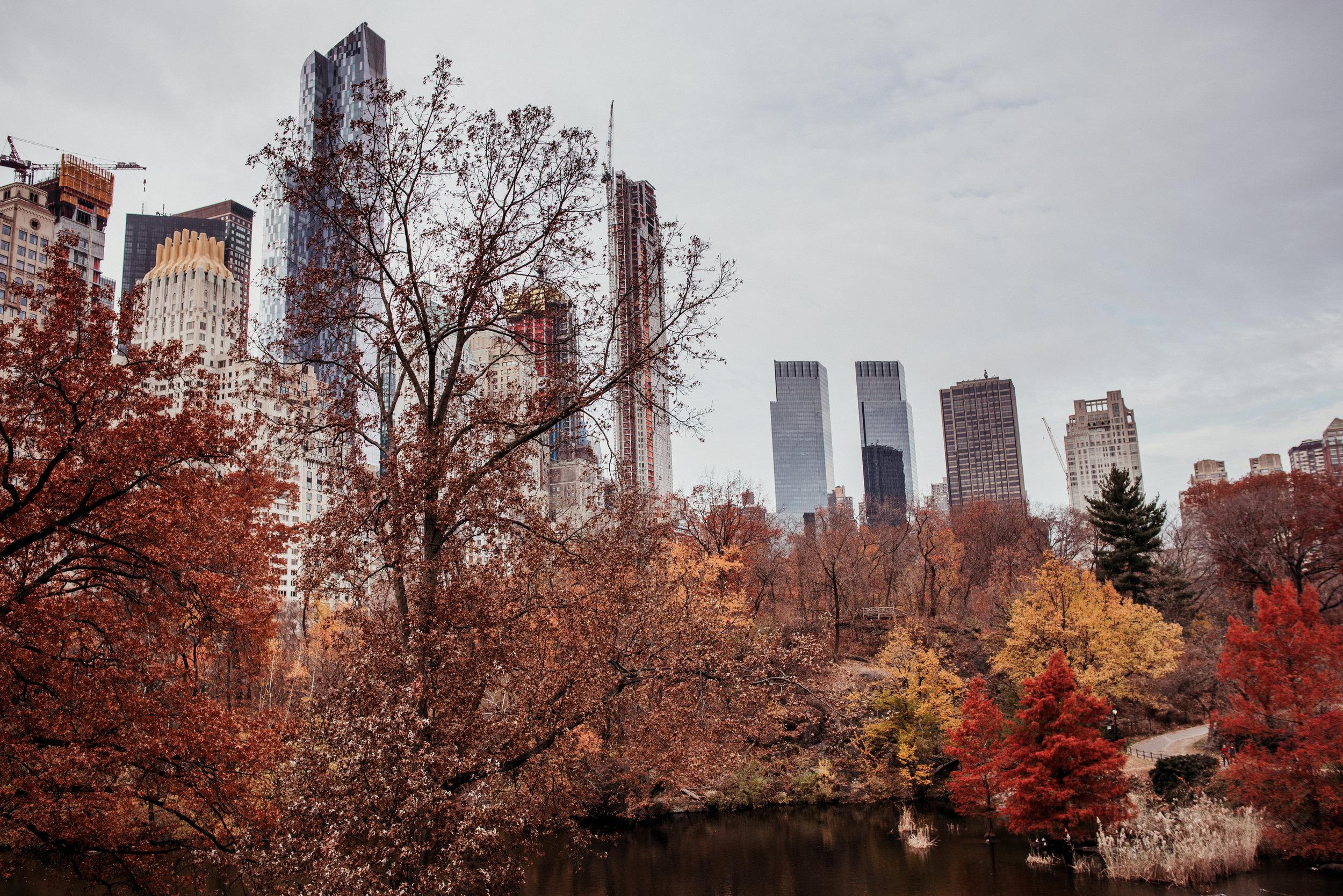 NYC-Dec2017-251.jpg