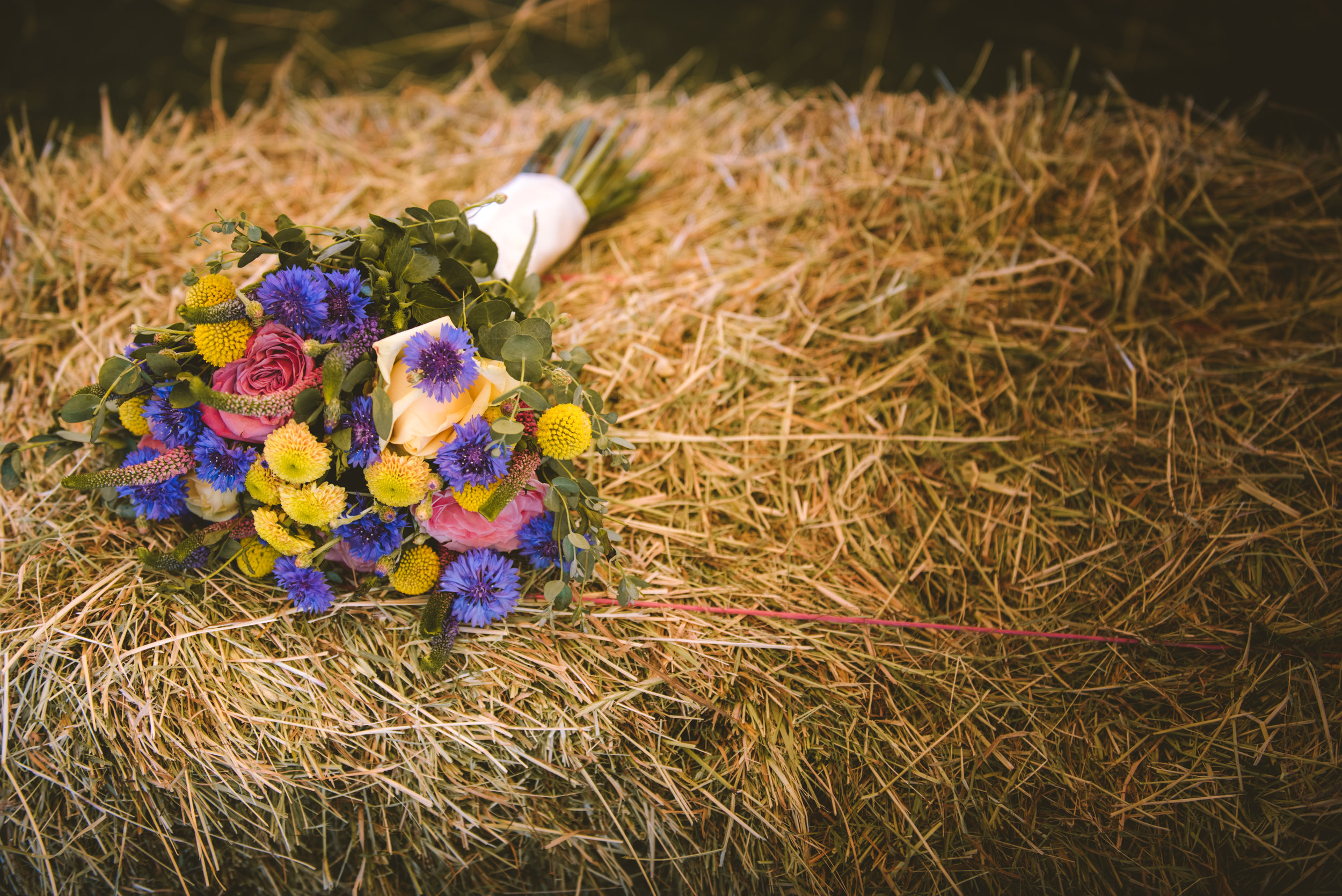 deers-leap-wedding-photographer-47.jpg