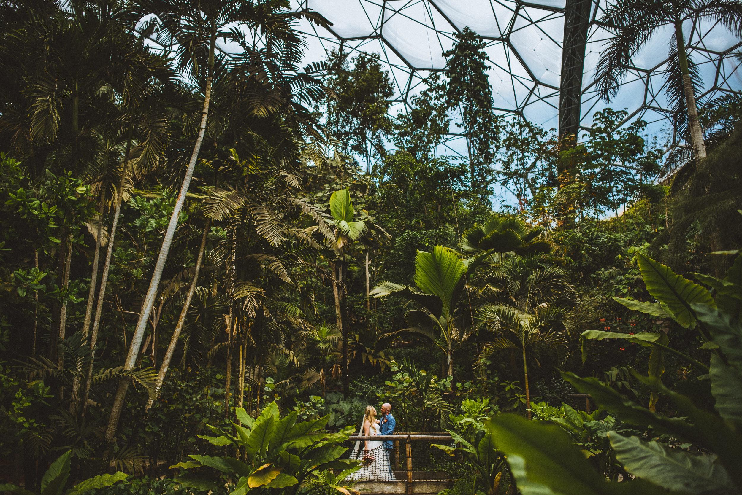 wedding-photographer-eden-project-2.jpg