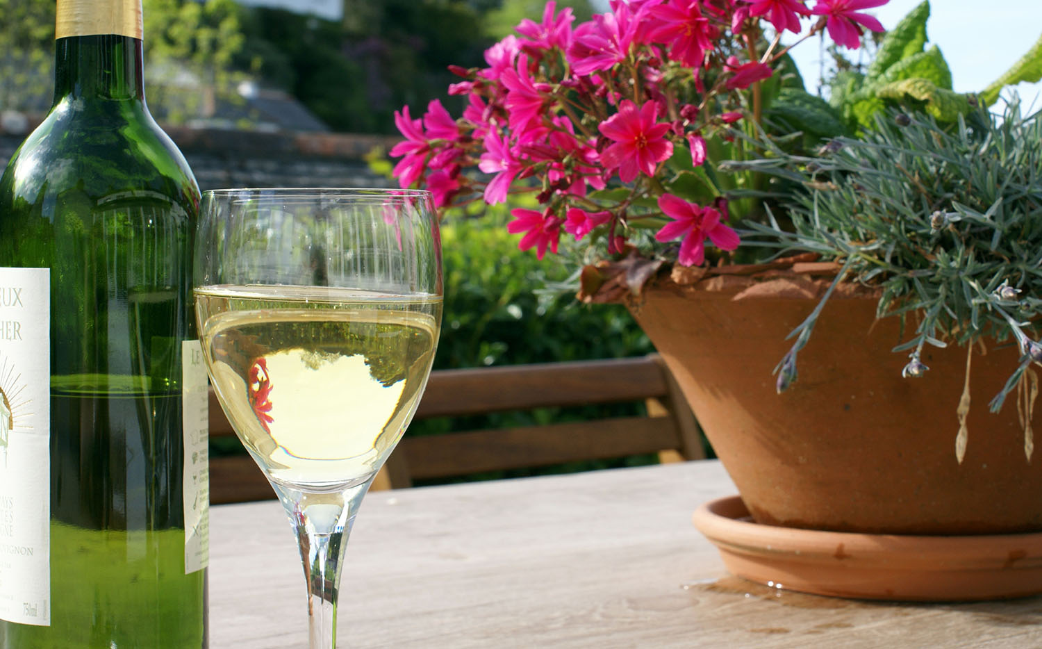 savor a glass of wine on the terrace