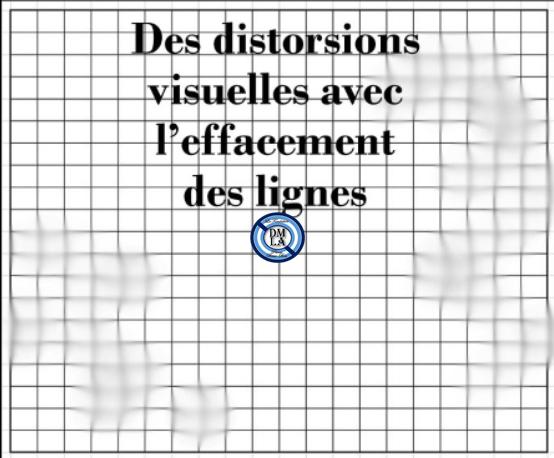 grille distorsion.jpg